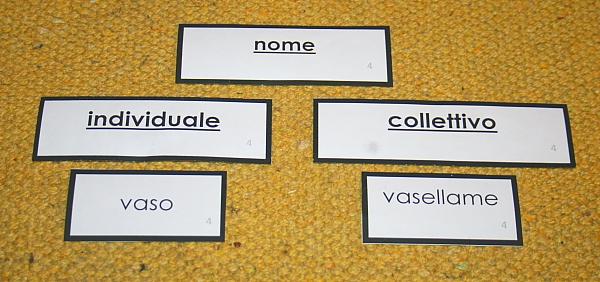 nomi individuali collettivi 4