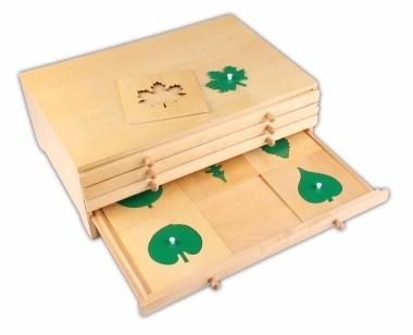 cofanetto in legno Montessori botanica