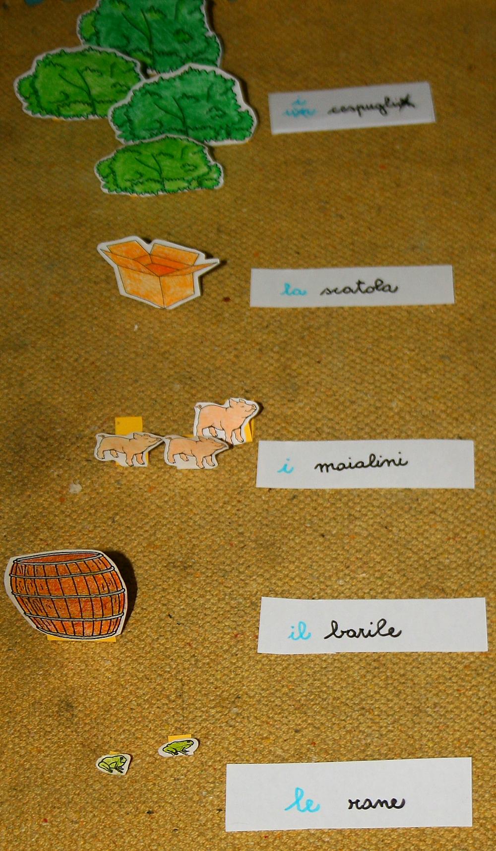 plurale articoli Montessori 4