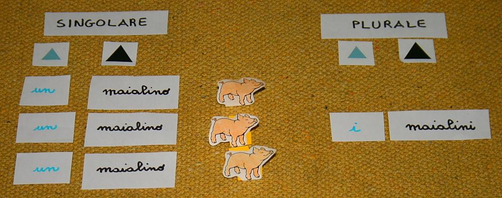 plurale articoli Montessori 5