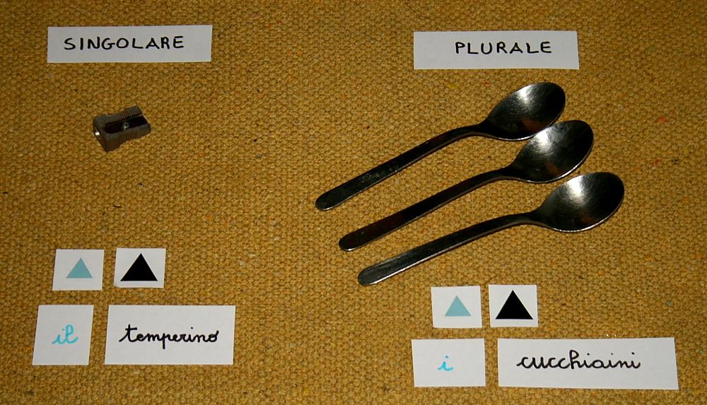 plurale articoli Montessori 6