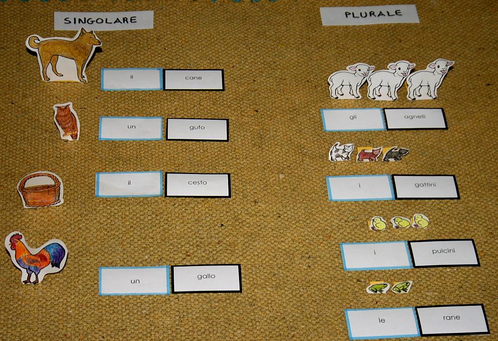 plurale articoli Montessori 8