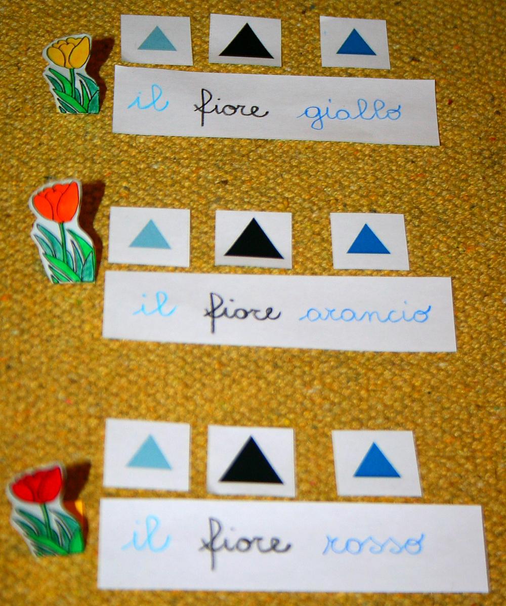 Psicogrammatica Montessori: esperienze chiave sull'aggettivo