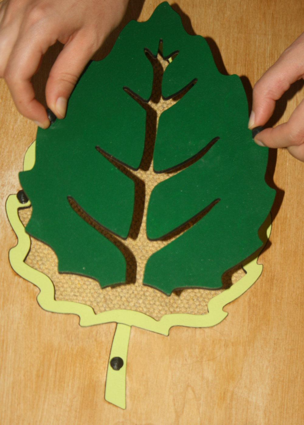 incastro foglia Montessori 12