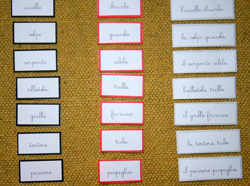Psicogrammatica Montessori Lespressione Corretta