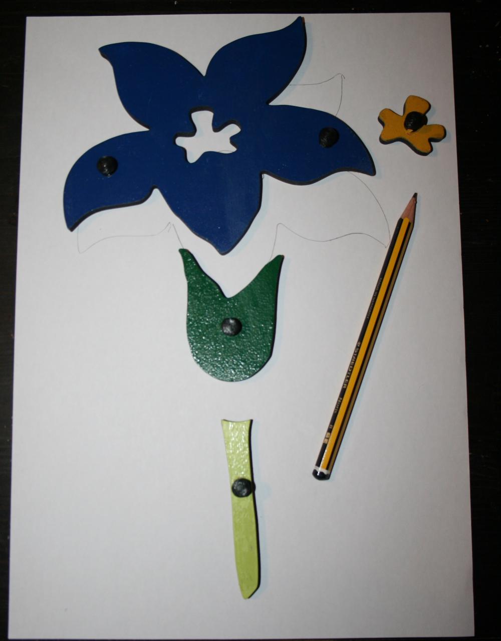 Botanica Montessori: l'incastro del fiore