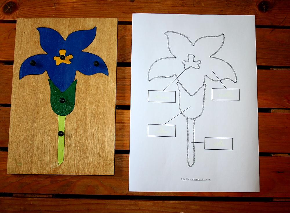 incastro del fiore Montessori 12