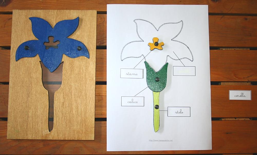 incastro del fiore Montessori 16