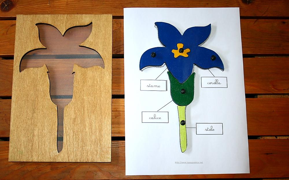 incastro del fiore Montessori 17