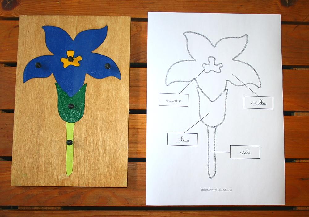incastro del fiore Montessori 18