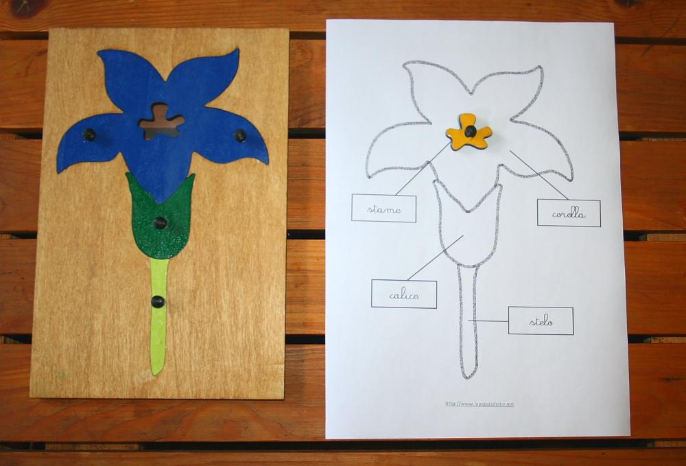 incastro del fiore Montessori 19