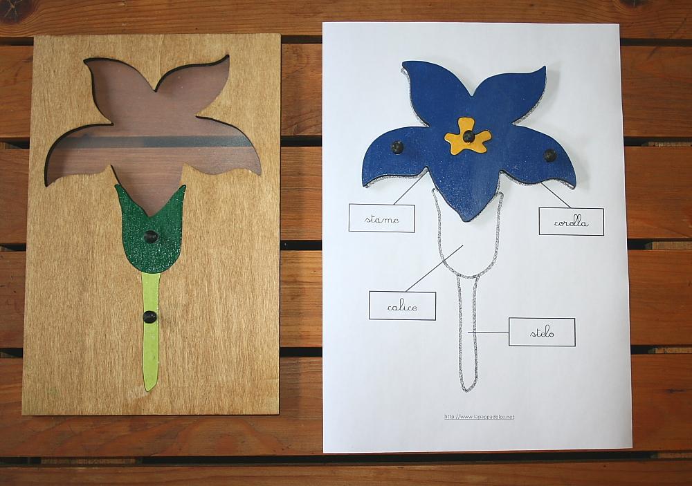 incastro del fiore Montessori 20