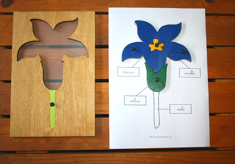 incastro del fiore Montessori 21
