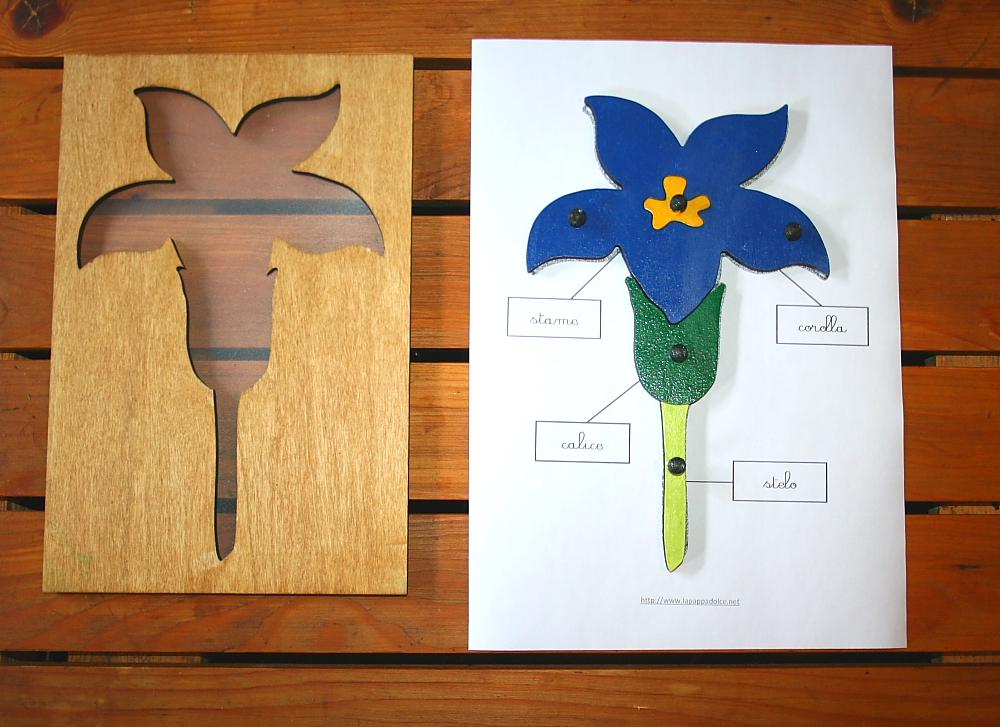 incastro del fiore Montessori 22