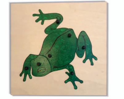 incastro della rana