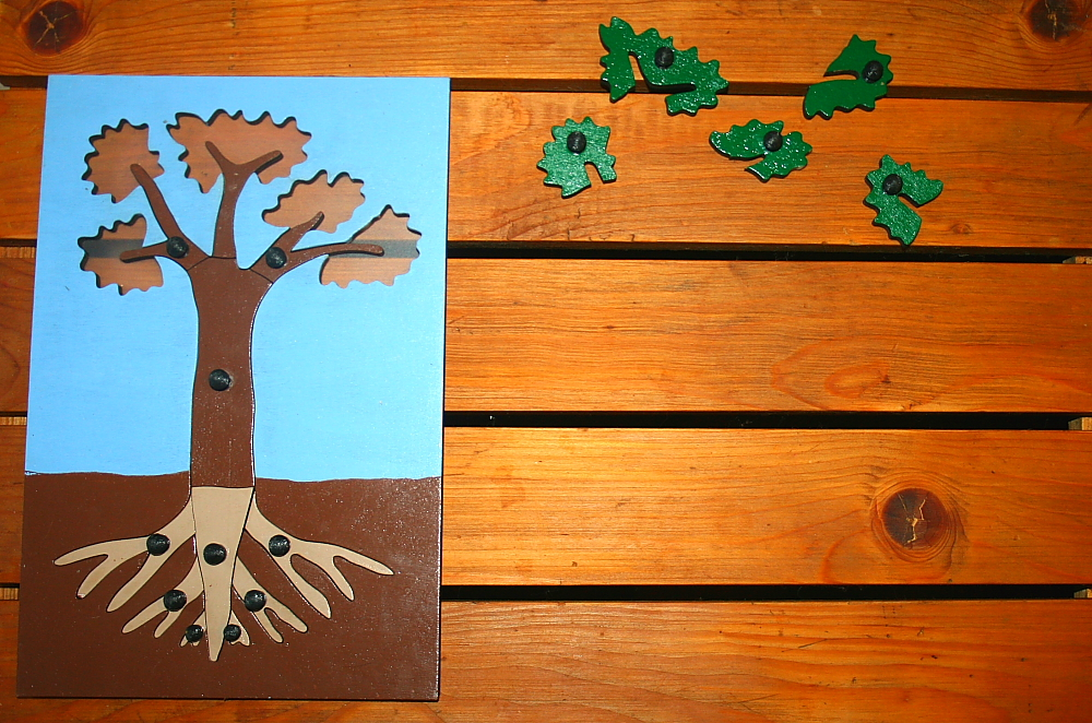 incastro pianta Montessori 4