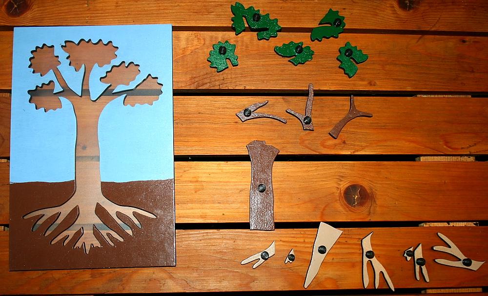 incastro pianta Montessori 7