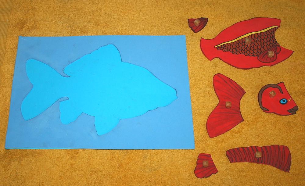 Incastro del pesce Montessori
