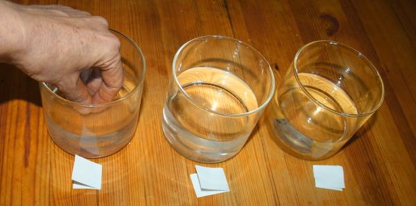 Esperimento scientifico: il senso del tatto è affidabile?